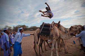 رياضة القفز عن الجمال في اليمن تلفت الأنظار