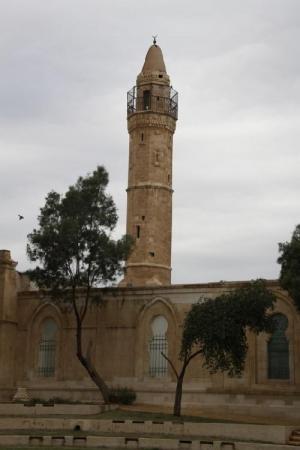 إسرائيل تدنس مسجد وتقيم مسابقة للخمور بساحته