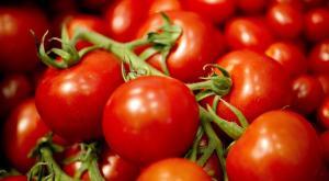 الطماطم تقي المخ من اﻷمراض والجلطات