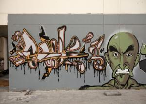 أنتشار الجرافيتي في الإمارات لنقد قضايا المجتمع