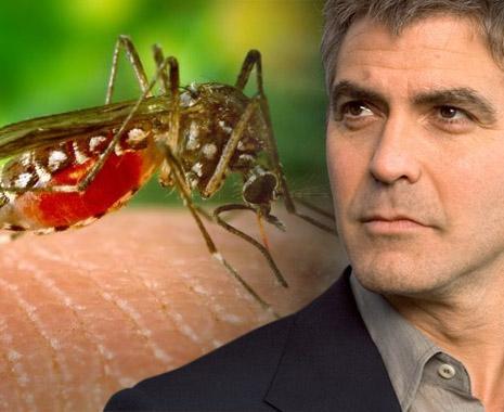 الممثل الأمريكي جورج كلوني يتعافى كلياً من الملاريا بعد اصابته في السودان