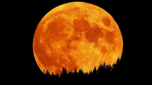 سكان الأرض على موعد مع القمر العملاق خلال اﻷيام القليلة المقبلة