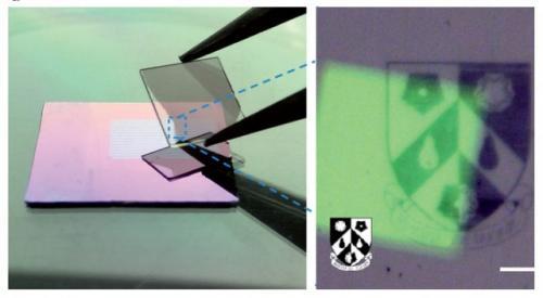 علماء يطورة تقنية لتصنيع بيسكلات مجهرية لتحاكي عمل العين البشرية