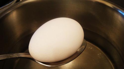 علماء يعيدون بيضة مسلوقة إلى وضعها اﻷولي