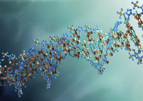 علماء يكتشفون الجين المسؤول عن خيانة الزوجة