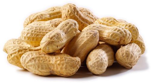 تعرف علي الفوائد الصحية المذهلة لتناول الفول السوداني