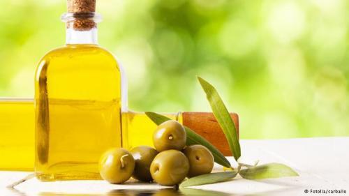 باحثون ينجحوا في تحويل بقايا الزيتون إلي وقود حيوي