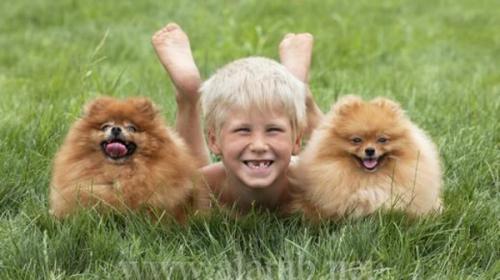 دراسة ألمانية التلوث بجراعات خفيفة مفيد للأطفال