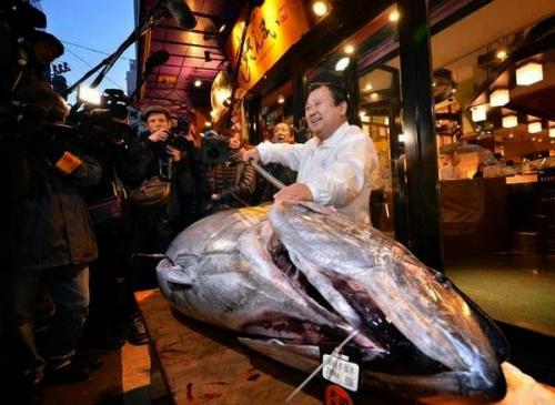 بيع سمكة تونة مقابل 4.5 مليون ين في اليابان
