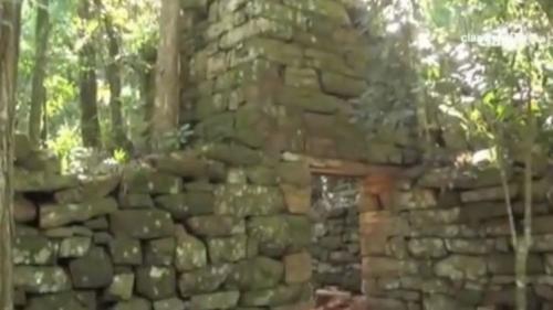 العثور على مخابئ سرية للقيادات النازيين بغابات الأرجنتين