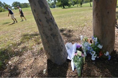 مقتل سيدة طعنا بالسكين أثناء تحدثها بالهاتف في حديقة عامة