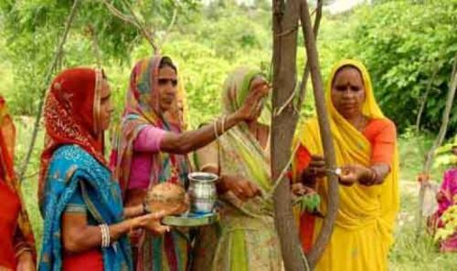 قرية هندية تحتفل بميلاد أي بنت بزراعة عشرات اﻷشجار